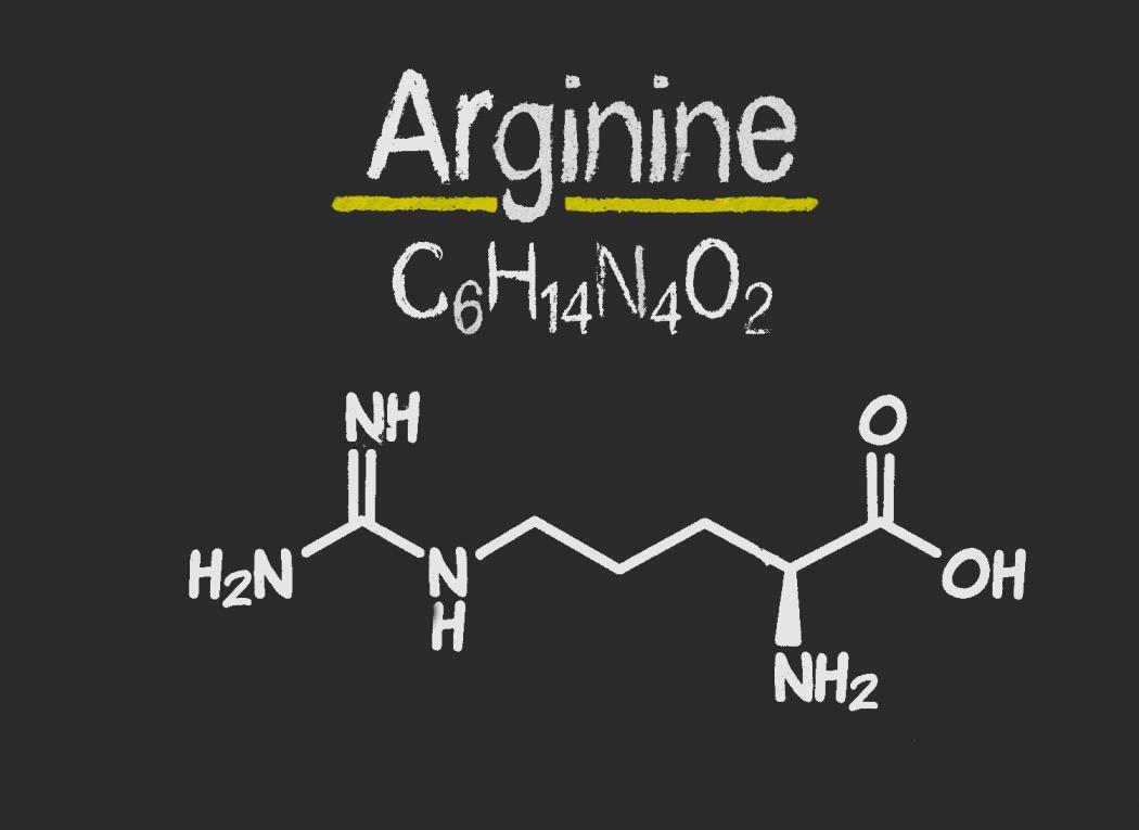 Полезные свойства аргинина